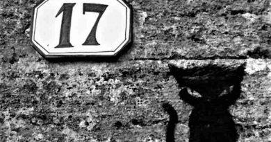 amuleti gatto 17